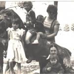 1984 (2)